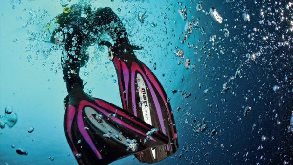 Diver Stress & Rescue Course