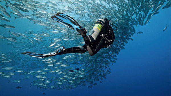 Enriched Air / Nitrox Dive Course